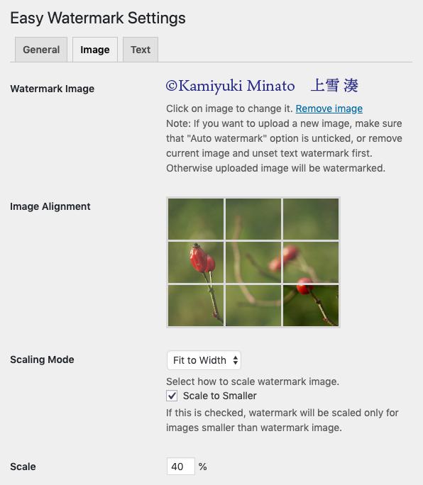 Imageタブ設定項目 1