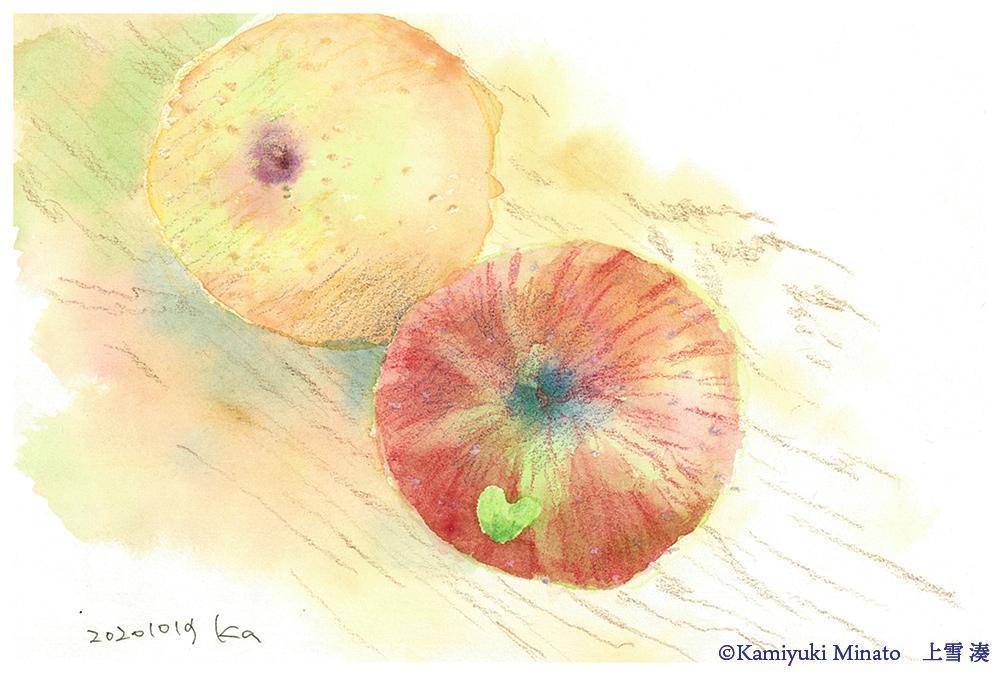 りんごと梨 2020